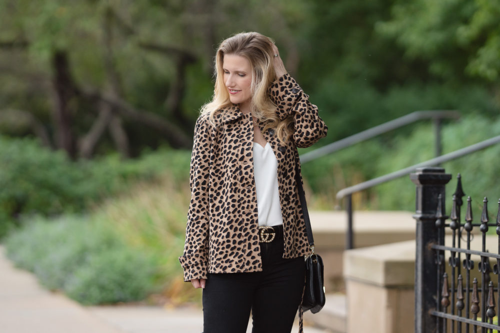 Petite Fashion and Style Blog | Ann Taylor Cheetah Dot Short Trench