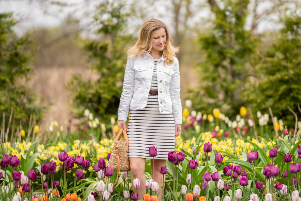 Petite Fashion Blog | Holland Michigan Tulip Time | Tulip Festival | Holland Tulip Fields | J. Crew Factory Striped Dress | J. Crew White Denim Jacket
