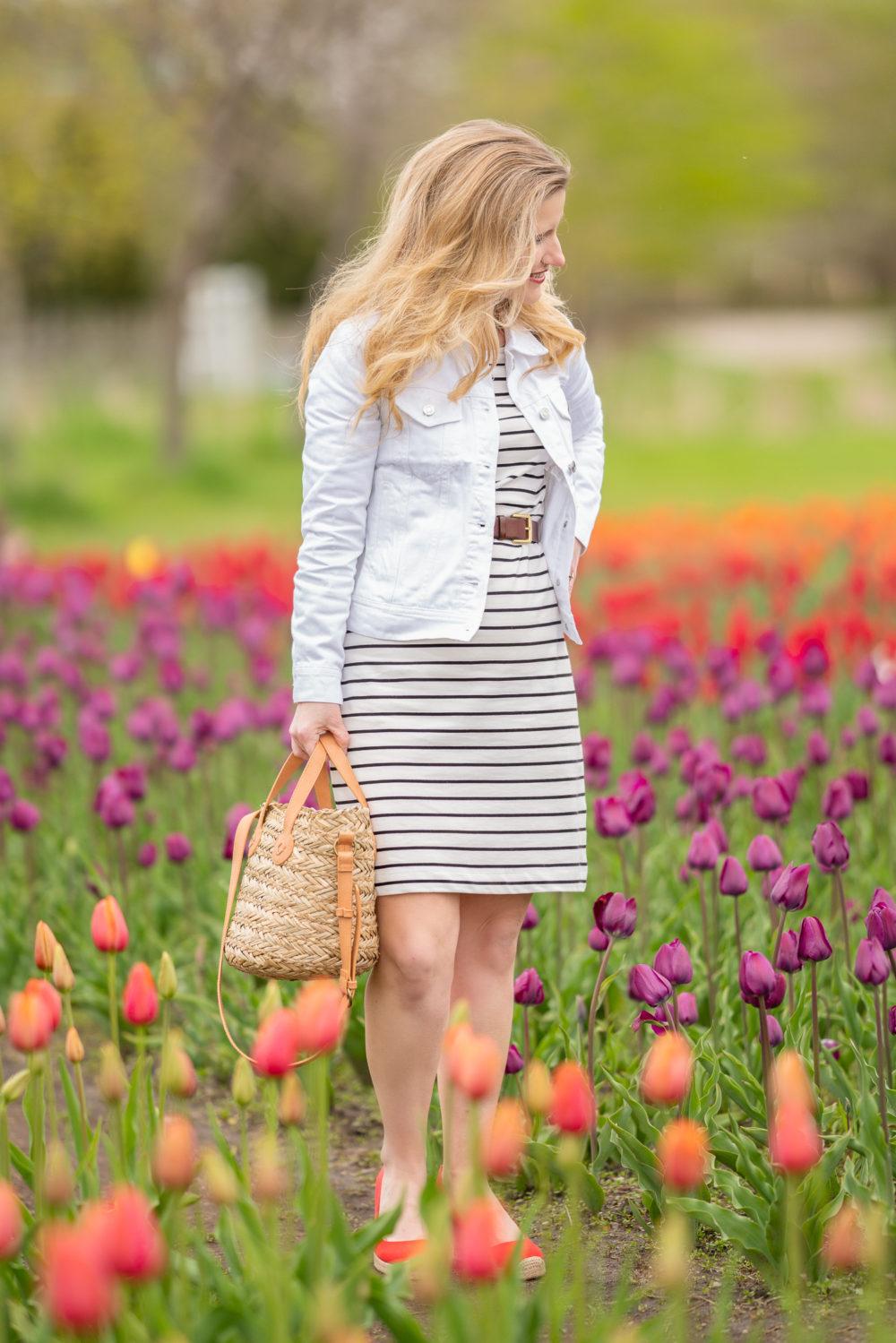Petite Fashion Blog | Holland Tulip Time Festival | Tulip Festival | Holland Tulip Fields | J. Crew Factory Striped Dress | J. Crew White Denim Jacket