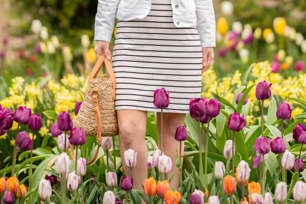 Petite Fashion Blog | Holland Tulip Time | Tulip Festival | Holland Tulip Fields | J. Crew Factory Striped Dress | J. Crew White Denim Jacket